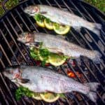 wood fire herb trout