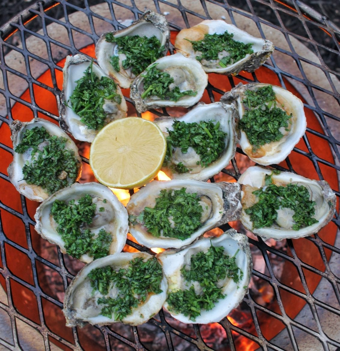 guinness oysters kilpatrick on the grill