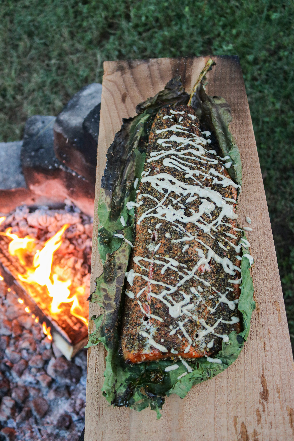 leaning salmon with roasted garlic aioli