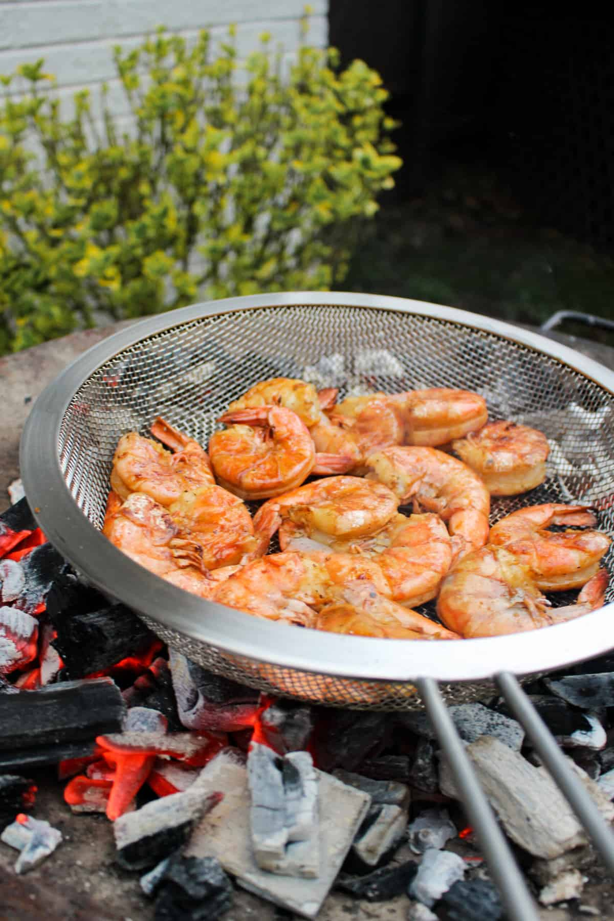 Grilled Shrimp with Garlic Chile Vinaigrette